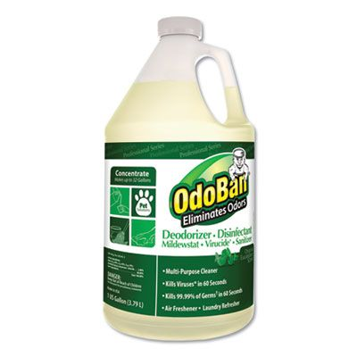 Clean Control 911062G4 OdoBan Deodorizer Disinfectant Cleaner, Eucalyptus Scent, 1 Gallon - 4 / Case