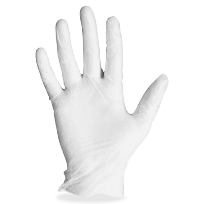 ProGuard 8606L Vinyl Gloves, Powdered, 4 Mil, Large, Clear - 1000 / Case